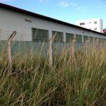 VOCÊ REPÓRTER: Escola Municipal está em meio ao mato – veja vídeo