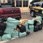 CONQUISTA: PRF faz apreensão de cerca de uma tonelada de drogas