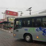 Conquista: Novos ônibus da Viação Rosa já estão na rua
