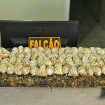 Esquadrão Falcão apreende mais de 3 mil pedras de crack com suspeitos de tráfico