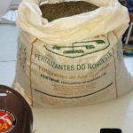 Jequié: Polícia descobre casa  utilizada para armazenar maconha e cocaína