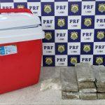CONQUISTA: Após abordagem a ônibus, polícia encontra maconha escondida em caixa térmica