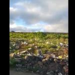 VOCÊ REPÓRTER: Moradores do bairro Nova Cidade denunciam lixo e descaso em ruas ASSISTA