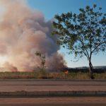URGENTE: Grave Incêndio atinge Parque Lagoa das Bateias em Conquista ASSISTA