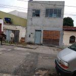 VOCÊ REPÓRTER: Animais soltos causam medo a moradores do Cruzeiro