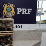 Quase 20 aves silvestres são resgatadas pela PRF em Vitória da Conquista