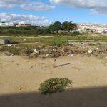 VOCÊ REPÓRTER: Lixo e mato tomam conta do condomínio Margarida, no bairro Campinhos