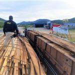 Jequié: PRF apreende quase 100 toneladas de madeira transportados ilegalmente pela BR-116